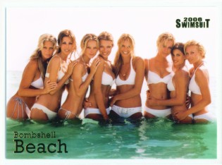 illustrated swimsuit 2006